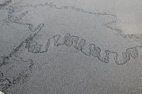 8 Автограф Арктики.JPG